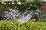 Благоустрій та озеленення територій, ділянок Васильків