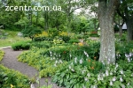 Благоустрій та озеленення територій, ділянок Вишгород