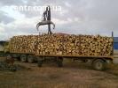 Дрова дубовые колотые, резаные кругляк Борисполь