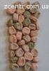 Горох овощной сорт Адагумский
