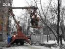 Кронирование деревьев, удаление деревьев, вырубка зарослей