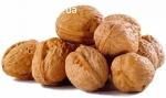 Куплю грецкий орех очищенный и в скорлупе по Украине