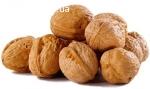 Купуємо грецький горіх по Полтава і Всій Україні