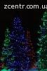 Новогоднее оформление и освещение ёлок