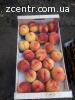 Персики оптом и в розницу