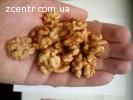 Продаем грецкий орех оптом, экспорт