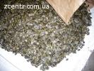 Продам насіння штирійського голонасінного гарбуза