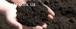 Продаж і доставка чорнозему 0680033500 Козин Конча Заспа