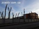 Валка деревьев, срезание  деревьев Вишнёвое