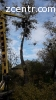 Видалення, розчистка, обрізка дерев Княжичі