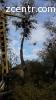 Вырубка деревьев, расчистка участка Глеваха